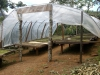 un techo protege los granos de café de la lluvia | México