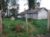 en casa con productores de té | Kenia