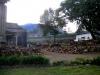 30000 Tonnen Holz pro Jahr für die Teefabrik | Kenia