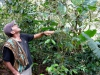 worried about his crop: coffee producer in Montero | Peru