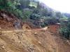 coffee plantation destroyed by landslides | Peru