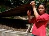 using coffee cherry husks as a natural fertilizer | Nicaragua